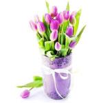 Возможные ошибки при выгонке тюльпанов