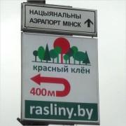 Где живут растения, подскажут наши новые дорожные знаки!