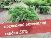 """Акция """"Последний экземпляр"""""""