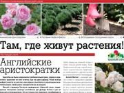 """Читайте весенний выпуск газеты """"Красного клена""""!"""