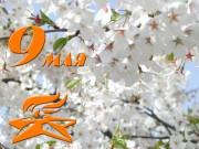 Режим работы питомника 6-9 мая